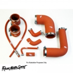 Roose Motorsport Racing BMW E36 M3 S50/S50B32 3.0/3.2 (1992-1999) Silicone Ancillary Hose Kit - RR201A